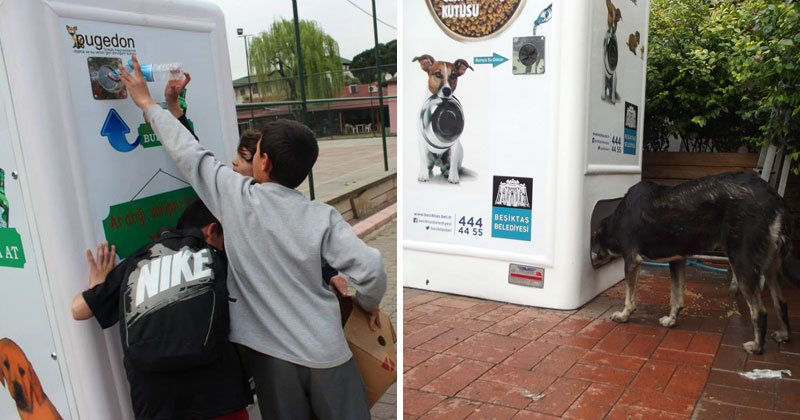 vending-machine-feeds-stray-animals-in-exchange-for-recycled-bottles-cover