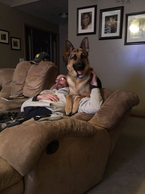 15-my-dad-didnt-want-the-dog-in-the-house-now-they-are-bffs