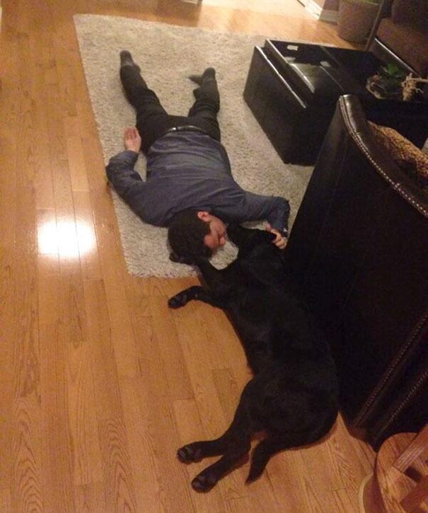 10 Papà che non volevano quel maledetto cane dentro casa con loro