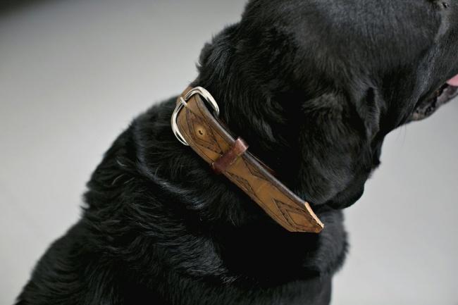 2727505-vintagebelt-dog-collars-650-81ef70b81d-1484730684