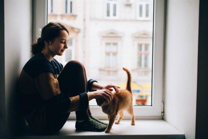 7 Motivi per cui i gatti ci rendono più Felici