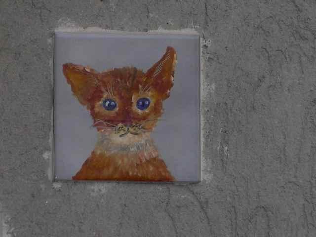 In Italia esiste un vero e proprio paese dei gatti