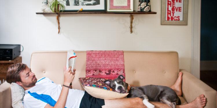 Il cane fa per te cose tenerissime: eccone 9 che sottovaluti