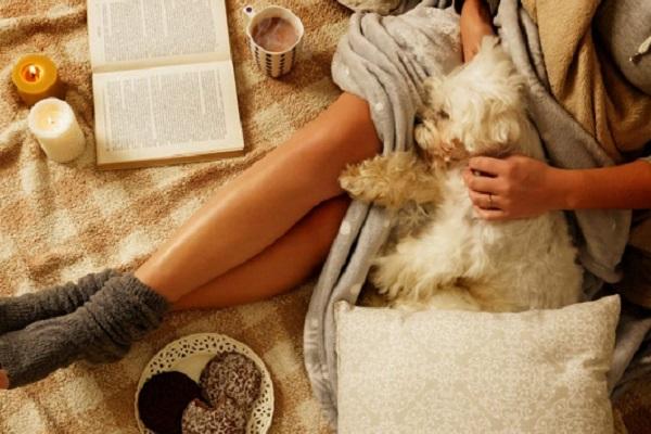 Il cane ti salva la vita: 8 modi in cui lo fa