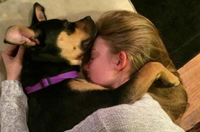 dog-cuddle-2