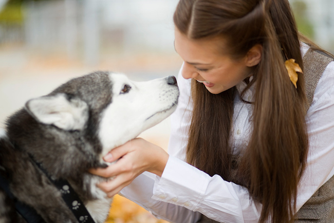 Young woman stroking dog on autumn day