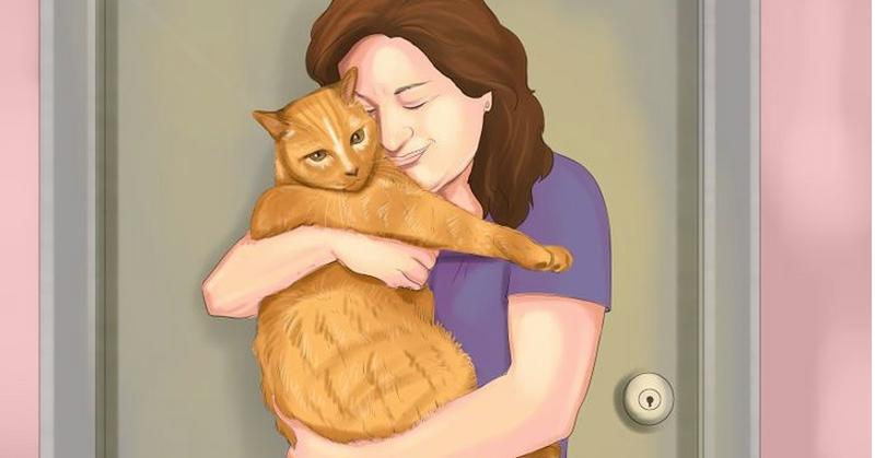 5 Modi Per Fare Amicizia E Prendersi Cura Di Un Gatto Randagio