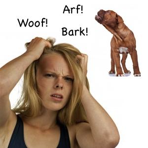 barking-causes-stress