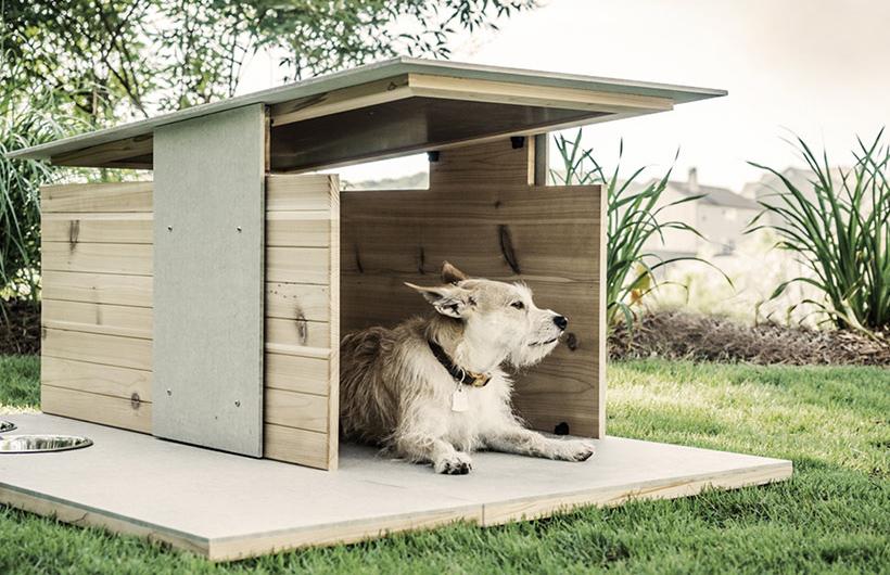 cuccia-per-cani-di-design-1b