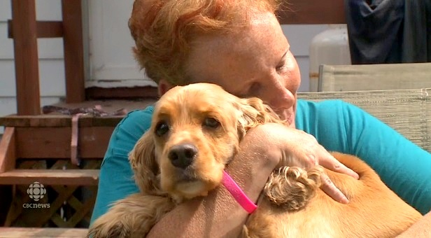 8-20-14-heroic-dog-saves-mom-from-deadly-house-fire