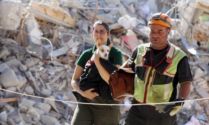 """""""È solo un cane, ci sono persone da salvare"""". Era di un bambino che ha perso tutta la famiglia"""