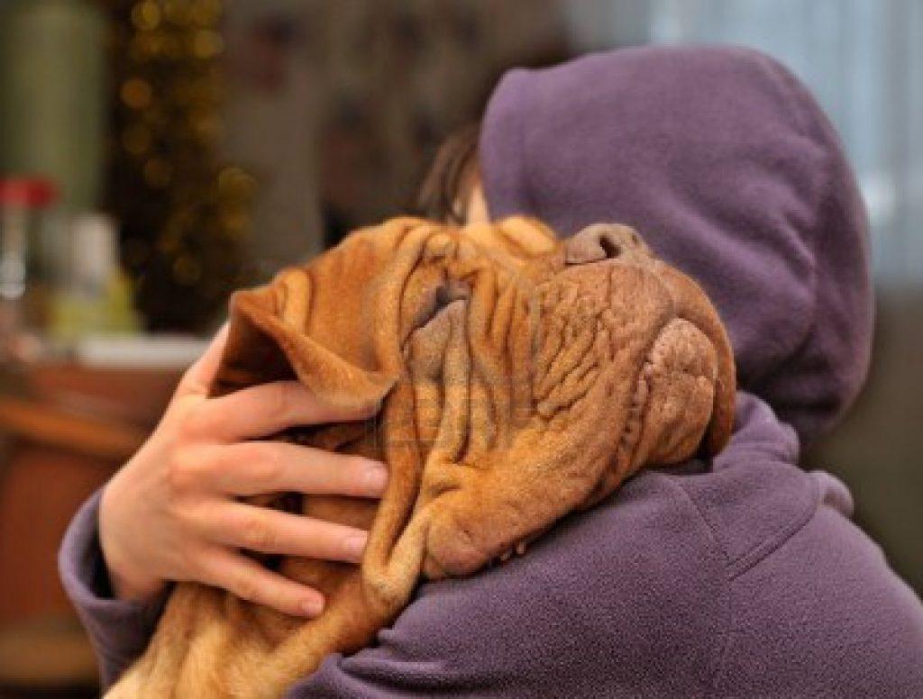 Il tuo cane vuole venire sempre in bagno con te? 9 Comportamenti comuni che nascondono un significato più grande