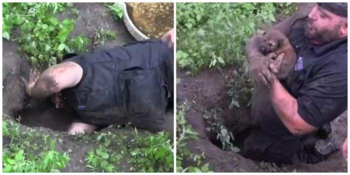 Salvano dei cuccioli che la mamma aveva nascosto in una buca
