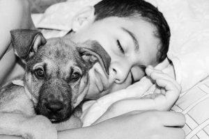 Se il tuo cane ti guarda alzando le sopracciglia ti sta dicendo una cosa importante e non dovresti ignorarla
