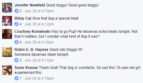 dog-comments