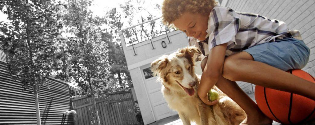 amare-un-cane-significa-imparare-il-significato-dellamore