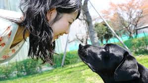 Tutti gli atteggiamenti che i cani odiano dei loro padroni