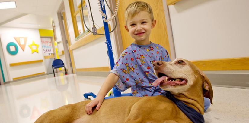 Cane che fa compagnia ad un bambino in ospedale
