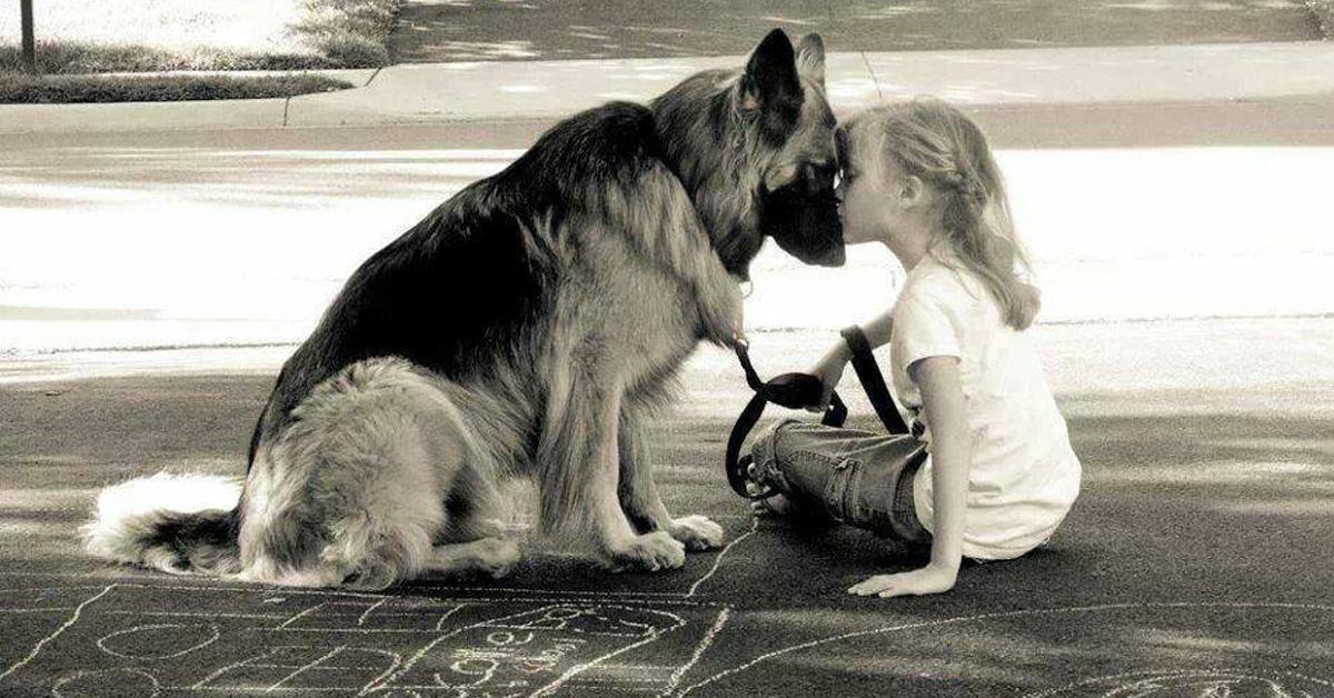 chi-maltratta-un-animale-non-sa-che-cosa-voglia-dire-amare