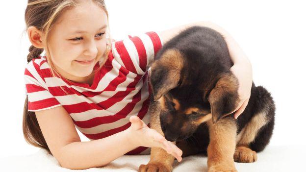 ecco-i-motivi-per-i-quali-un-cane-allunga-la-nostra-vita