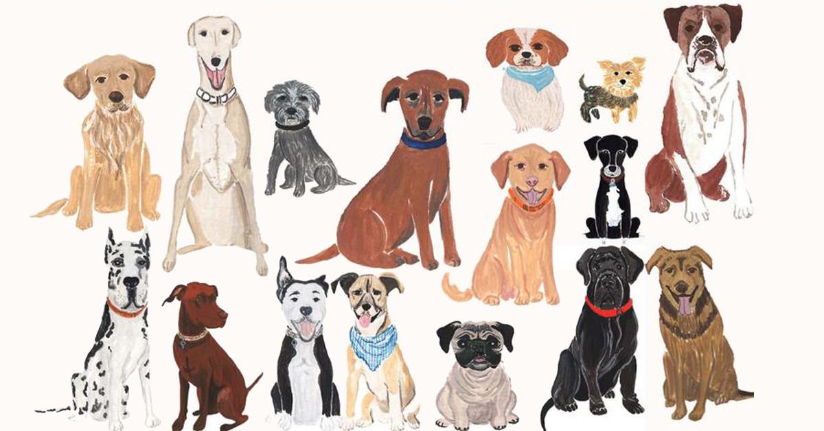 7286156a41d41c Ecco quale è la miglior razza di cane per ogni segno zodiacale