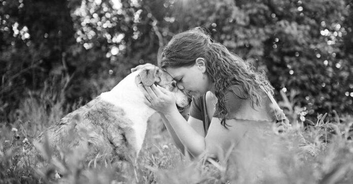 I cani combattono la depressione ecco 5 prove a sostegno