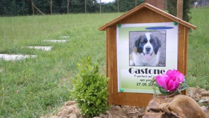 Il cimitero dei cani