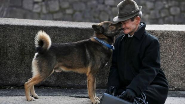 Il rapporto tra uomo e cane è più forte di quello tra gli umani