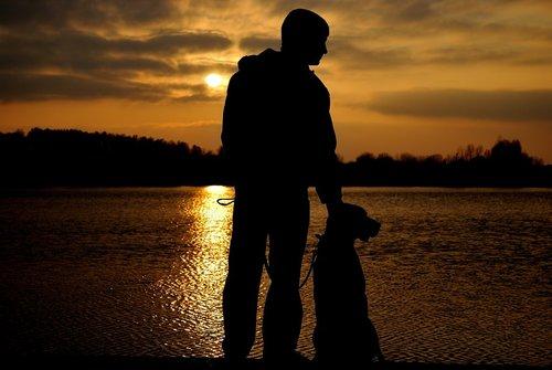 Sadle, la cagnolina che ha affrontato il lutto in un modo davvero particolare