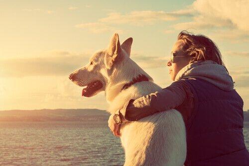 I cani combattono la depressione: ecco 5 prove a sostegno