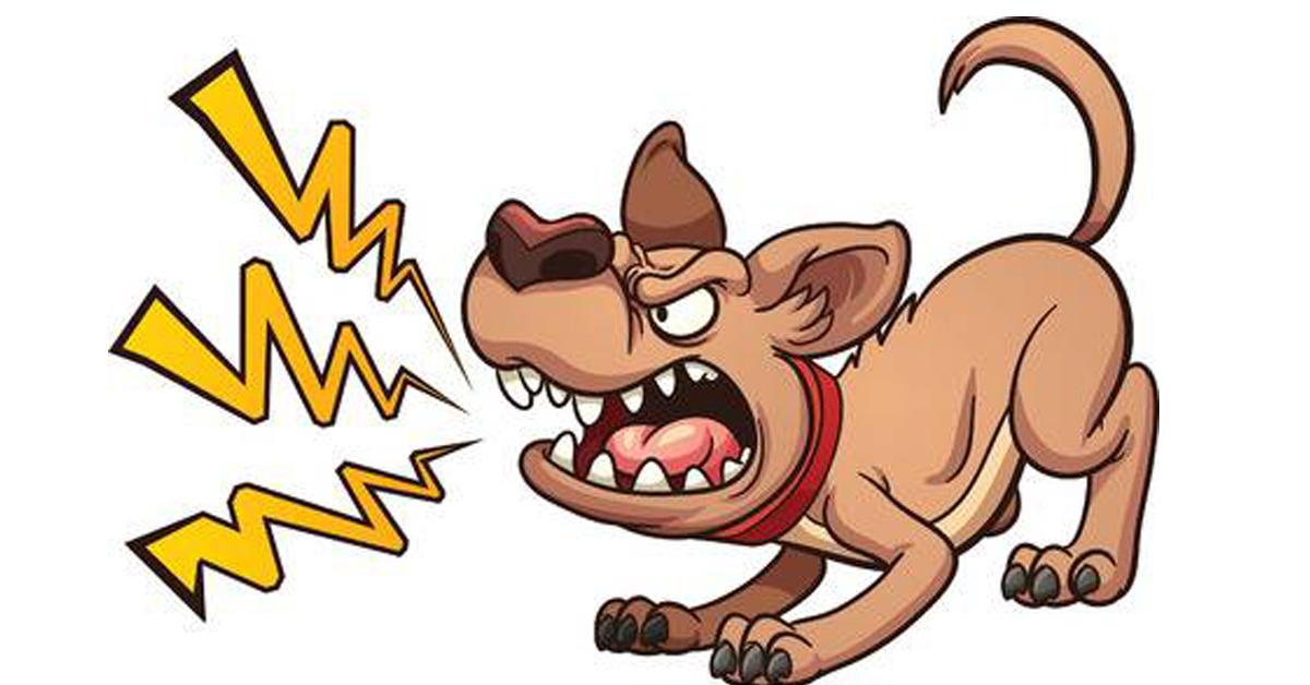 tutti-gli-atteggiamenti-che-i-cani-odiano-dei-loro-padroni