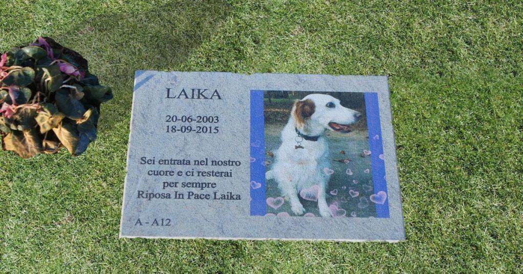 Un esempio di sepoltura di un cane
