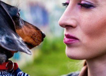 donna che guarda il suo cane
