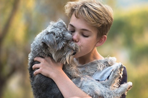 cane in braccio a ragazzo