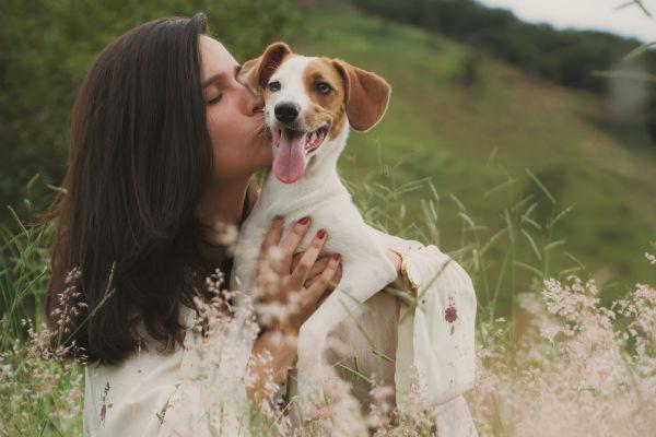 I cani sentono la gravidanza?