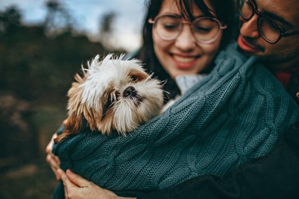 Perché il cane migliora la vita