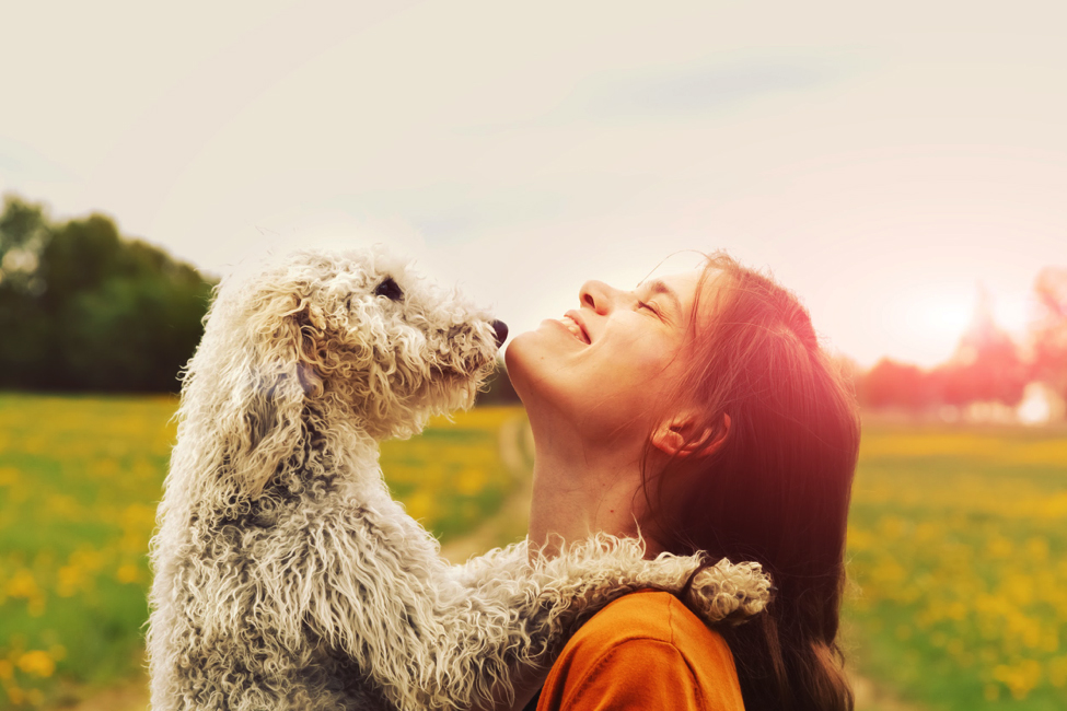 Cane che abbraccia una ragazza