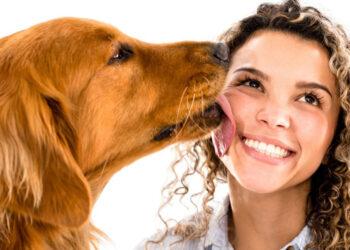Cane che lecca una ragazza