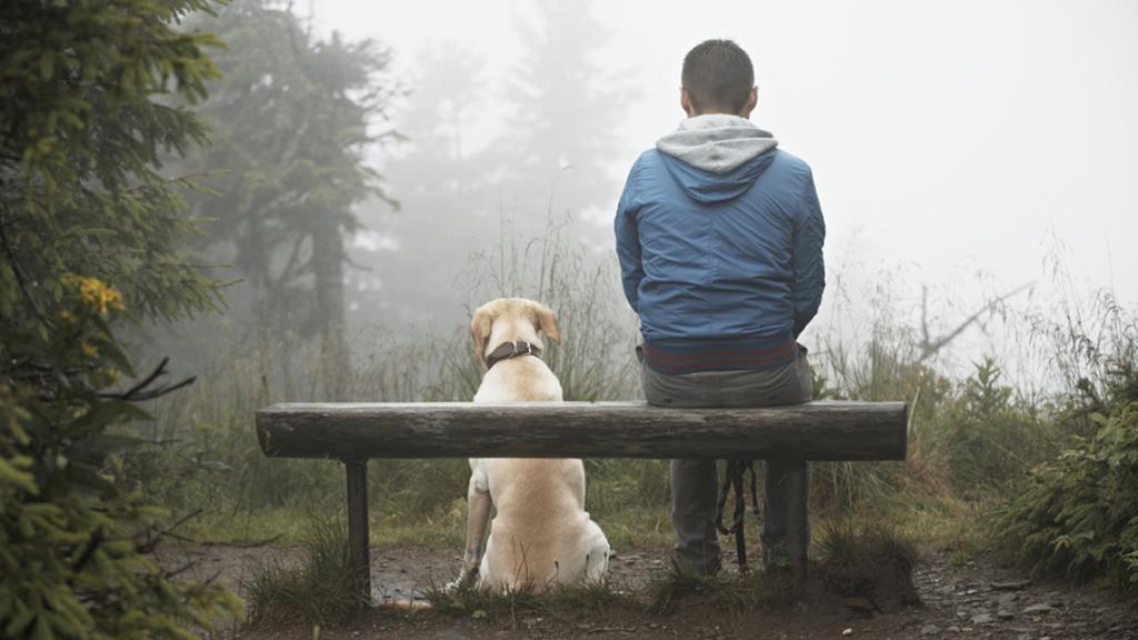 Cane seduto con il proprio padrone