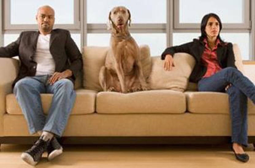 Cane sul divano tra due persone