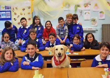 Cani motivatori aiuteranno i ragazzi tra i banchi di scuola