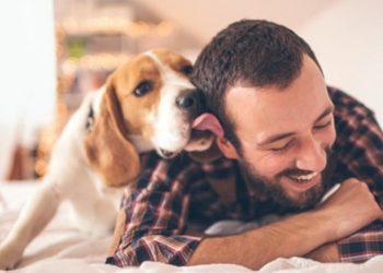 I nostri cani hanno una missione spirituale ecco cosa dice la scienza