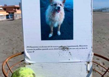 Il Totem di Meggy ecco l'omaggio della famiglia al cane che non c'è più