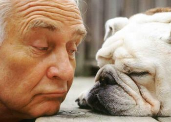 Il cane è il migliore amico dell'uomo ma quali sono i motivi