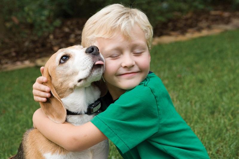 Un bambino abbraccia un cane