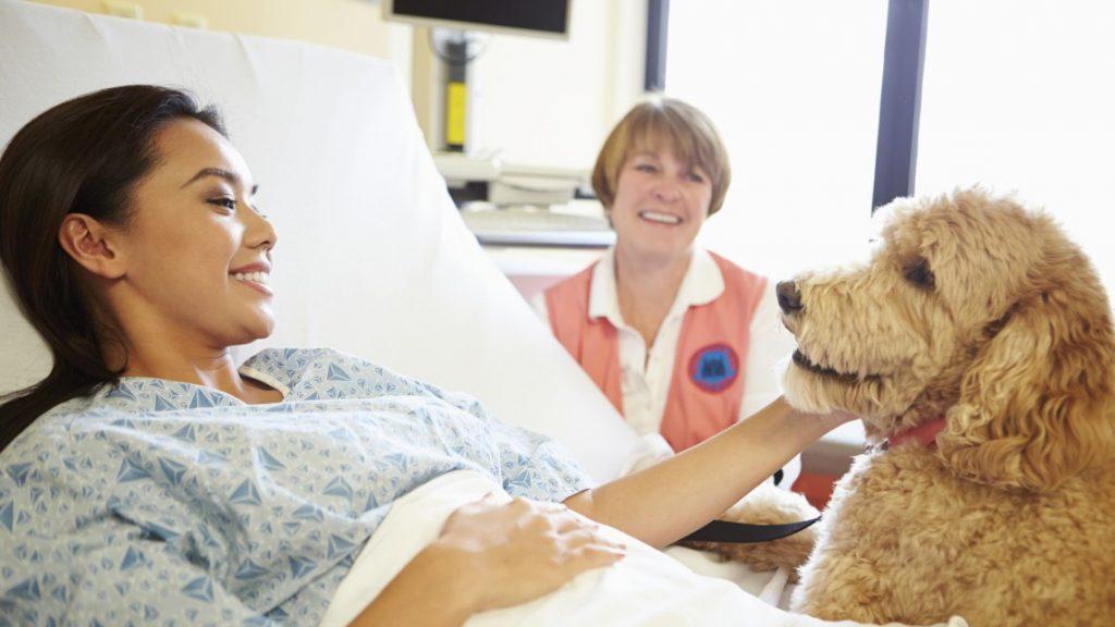 Quando i cani fanno bene al cuore: la Pet Therapy di Aida e Chupito