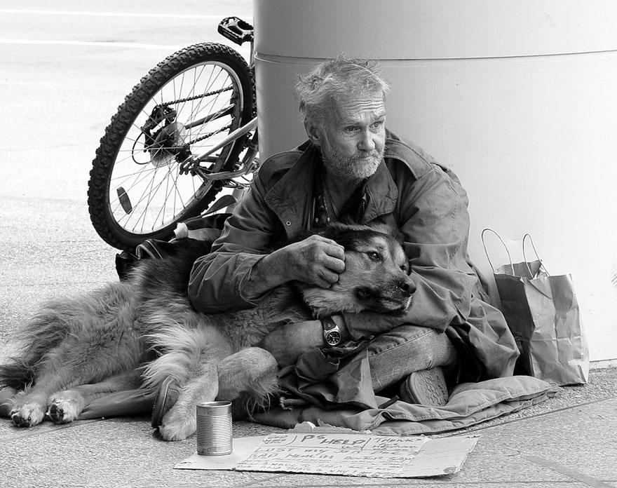 Cani dei Clochard: a Milano arriva l'assistenza veterinaria gratuita
