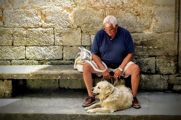 A che età i cani smettono di crescere?