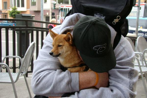 uomo abbraccia cane
