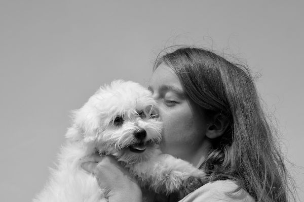 Ai cani piacciono i baci?